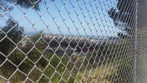 CANDLESTICK THRU FENCE - Copy